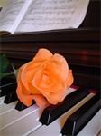 musicaclasica1